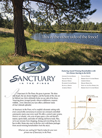 braintree-tree-brochure-700px-copy.jpg
